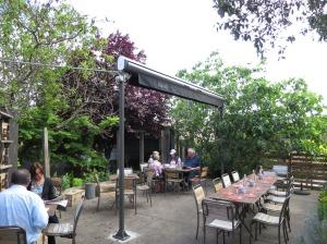 Scarvelli Backyard
