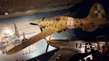 NAM-31