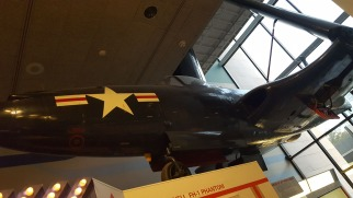 NAM-313