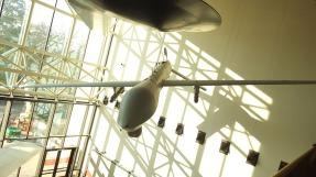 NAM-51